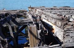 Hulks of old barges - Homebush Bay, Sydney
