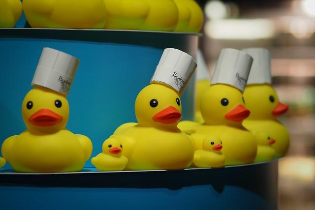 黃色小鴨|光榮碼頭