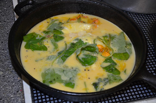 nasturtium omelette Oct 13
