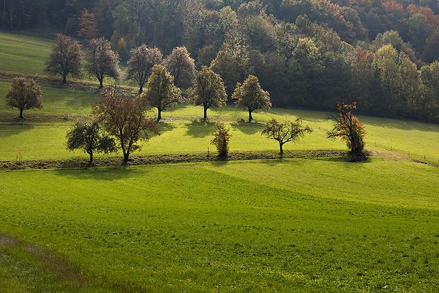 Landscape of Lower Austria in Autumn.