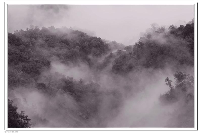 福壽山的水墨與抽象畫