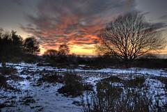2010 02 16 Hilversum Bluk Sundown