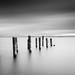 Lake B/W by Simone Chierici_Boyetto