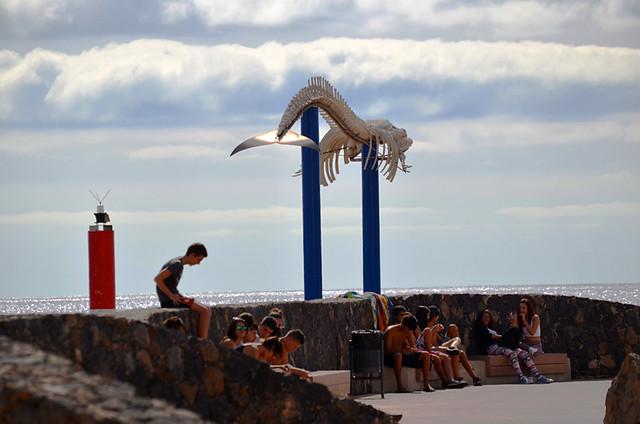 Whale Sculpture, Puerto del Rosario, Fuerteventura