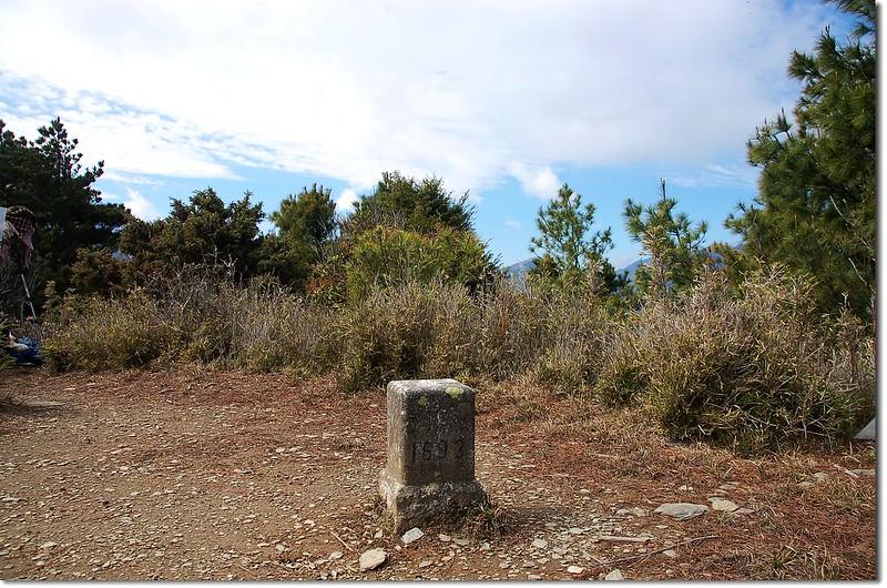 盆駒山二等三角點(# 1693 Elev. 3109 m) 2