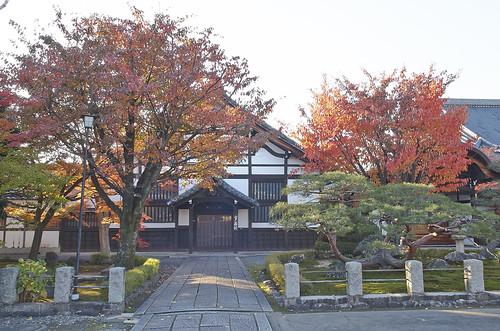 【写真】紅葉 : 妙覚寺