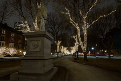 Commonwealth Ave Boston at Night  - HDR - December 2013 copy