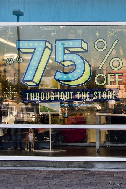 Downey Landing sales