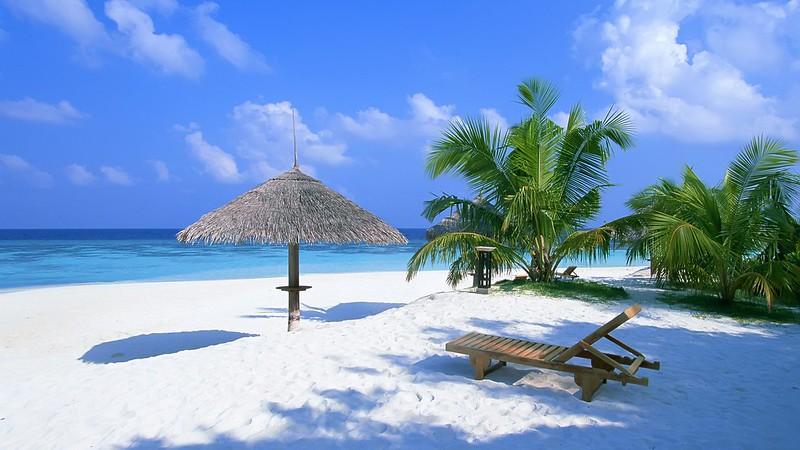 Exotic_Paradise_1920x1080