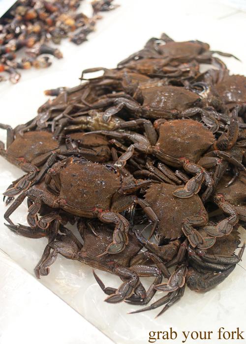 Crabs at Plaza de Lugo Fish Market in A Coruna, Galicia, Spain