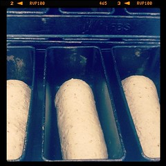 Bread for the lunchtime sandwiches #chefs #realbread