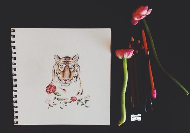 tiger & ranunculus