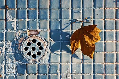 El otoño del Ereta by atxu