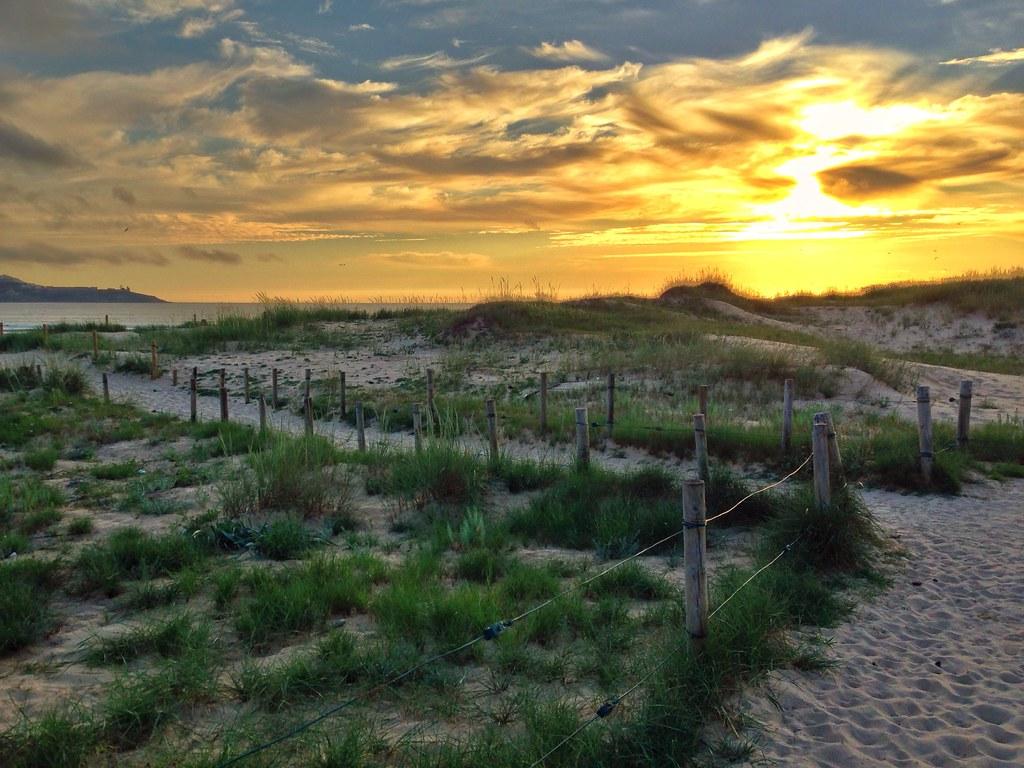 Camino a la playa [219/365] #lafotodeayer