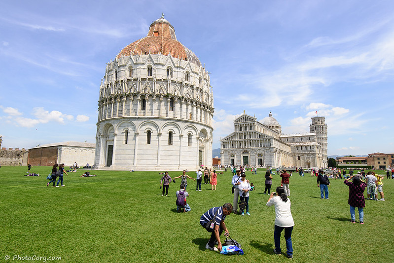 Pisa Cathedral, grass