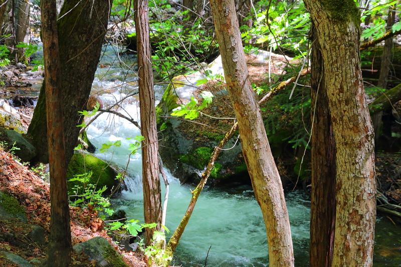 IMG_6666 Tenaya Creek