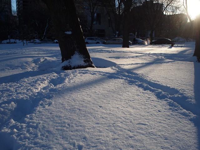 Schwoop schwoop is the sound of me sinking in the snow