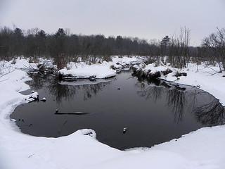 Spring fed pond at Audubon - winter duck habitat