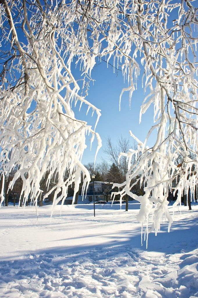 anteketborka.blogspot.com, ciel 16 e