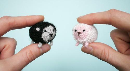 Eep! Tiny sheep!