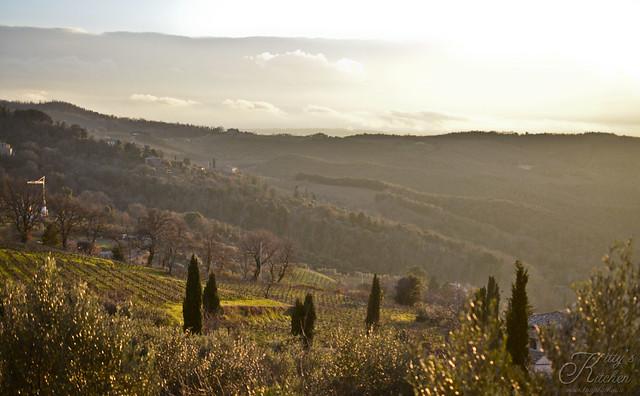 Montalcino feb15_8450 copia