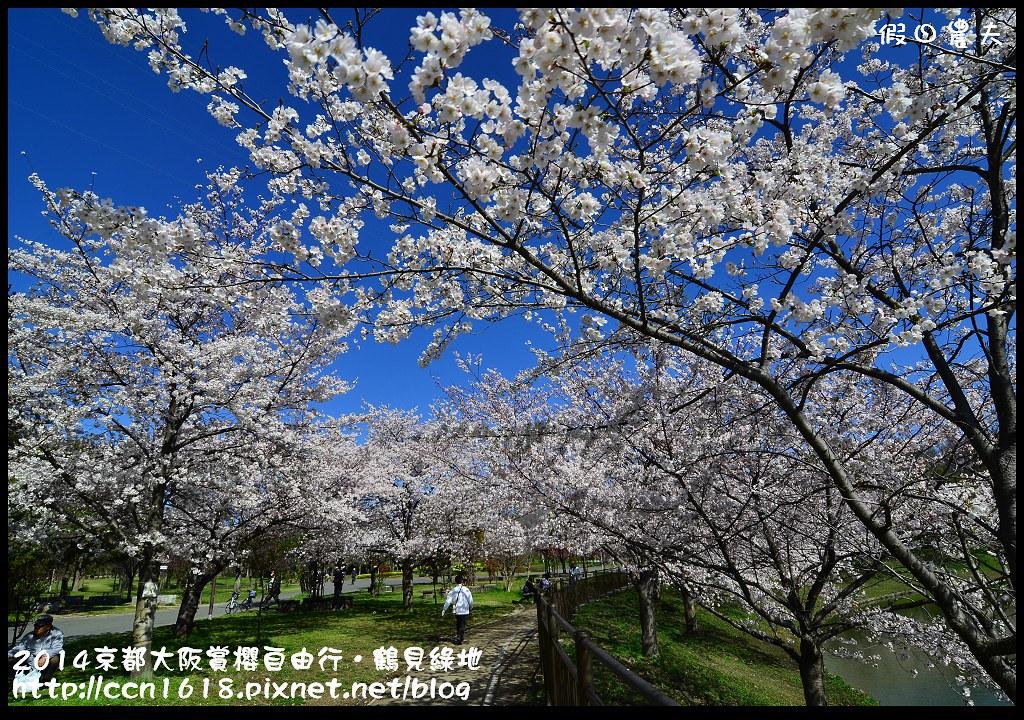 2014京都大阪賞櫻自由行.鶴見綠地DSC_1266