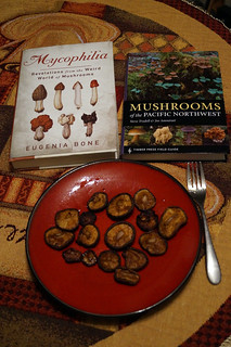 Roasted shiitakes and current reading