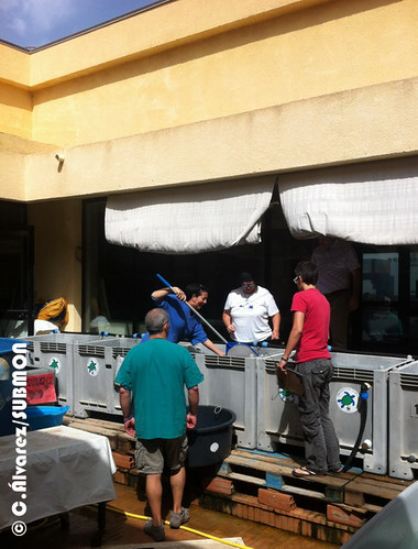 Centro de recuperación de tortugas marinas de Lampedusa, Italia