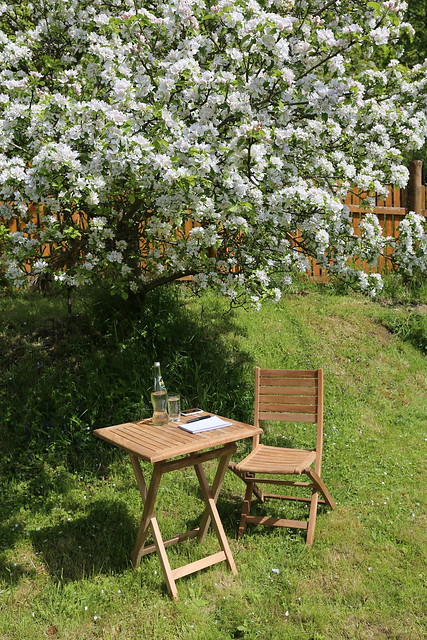 Writing under the apple tree
