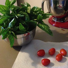 Some more tomatoes and a ton of basil from the garden.