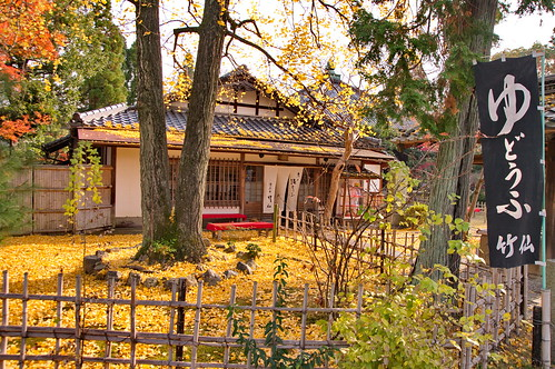 【写真】2012 紅葉 : 清凉寺/2020-09-21/IMGP7813