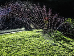 home is where the sprinkler is