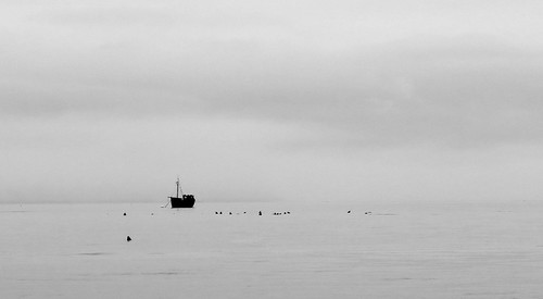 ocean blackandwhite seascape fog boat seals canong15