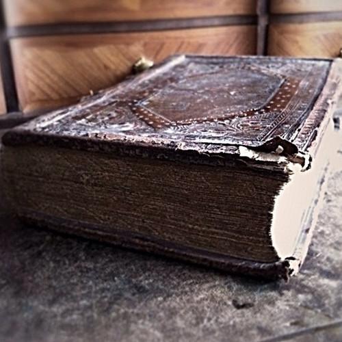 Messe | Prettytigers Bücherregal