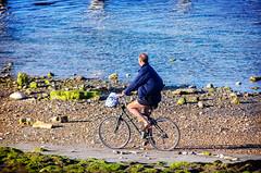 Beach Cyclist