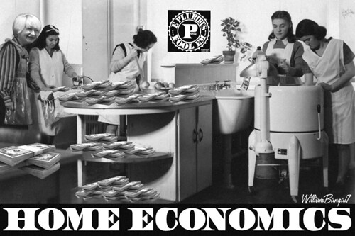 HOME ECONOMICS 101 by WilliamBanzai7/Colonel Flick
