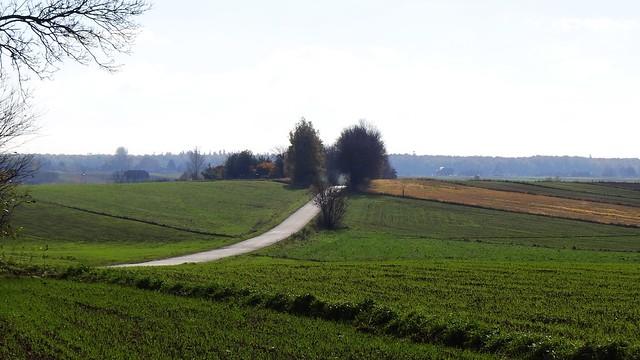 autumn in Paprotnia
