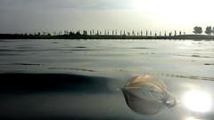 2013 10 26 October Swimming