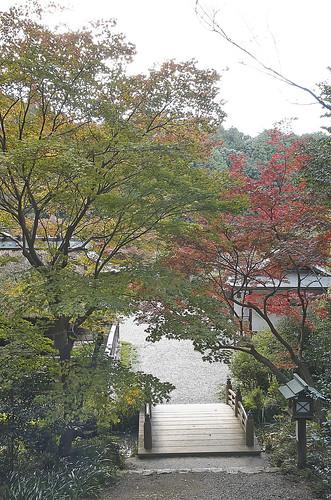 【写真】2013 紅葉 : 日向大神宮/2020-10-05/IMGP3374