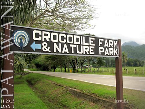 Croc IMG_5214-hello PP1 kv