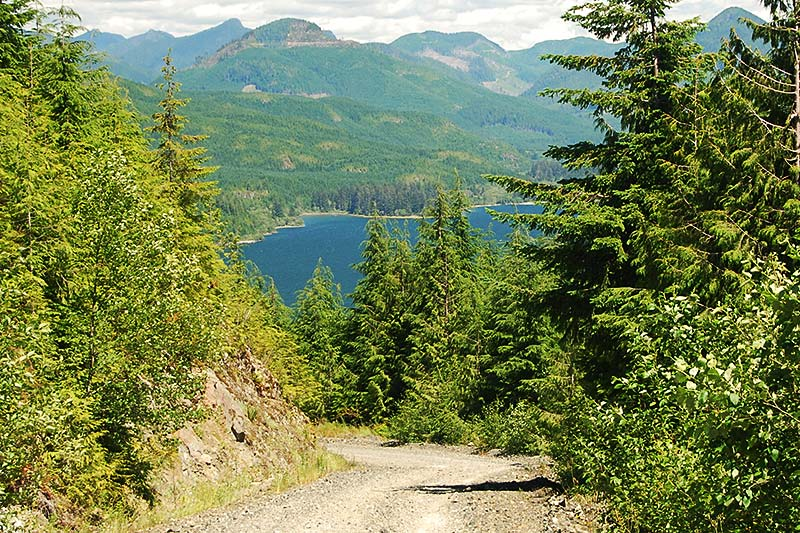 Nitinat Lake viewed from Carmanah Main Logging Road, Southwest Vancouver Island, British Columbia