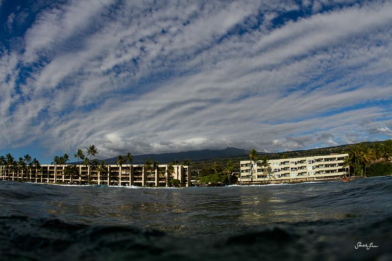 sarahlee_kona_banyans_bigisland_hawaii.jpg