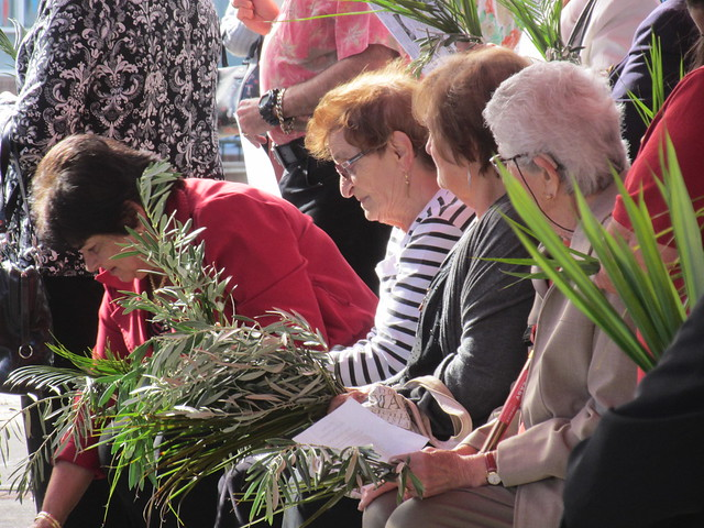Palms and Olive branches at Palm Sunday Procession
