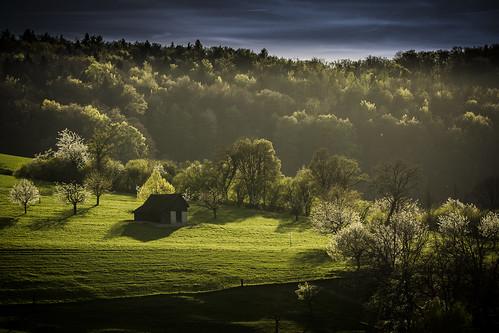 blue shadow black green rural canon landscape schweiz switzerland cabin warm mood shadows suisse swiss hütte scenic basel grün blau svizzera landschaft schwarz stimmung frühling 70200mm blühen baselland cabininthewoods malerisch baselbiet gelterkinden basellandschaft baselcountry canoneos60d simonmangold