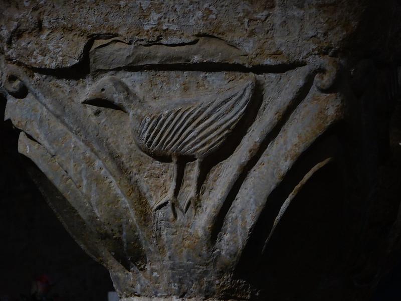 Bird capital