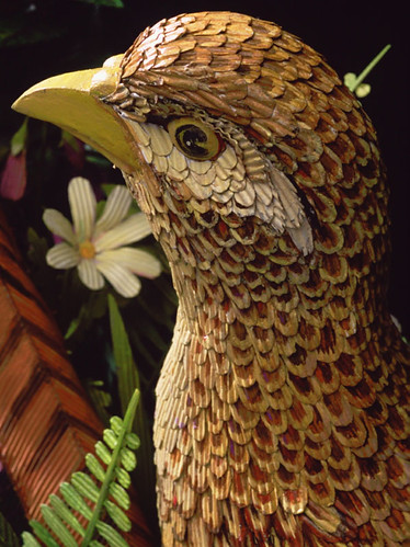 james-grashow-cardbirds