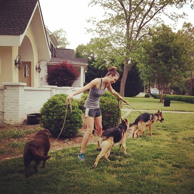Kelsey loves dog wrangling.