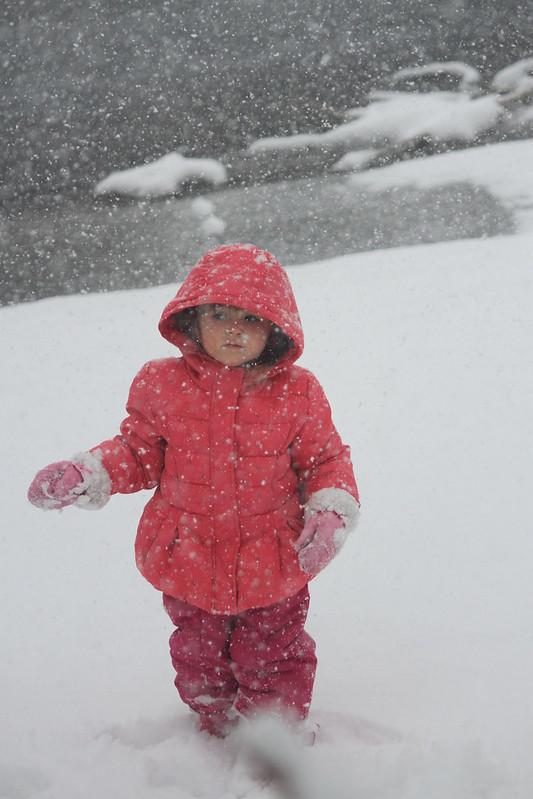 elise snow