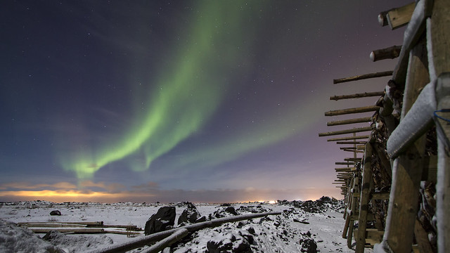 Northern lights over the fish flakes   Iceland