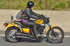 1987 Yamaha XV400 Virago